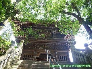 52-138愛媛県松山市