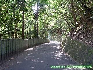 53-003愛媛県松山市