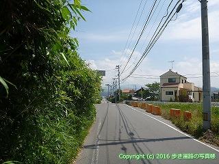 53-012愛媛県松山市