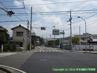 53-020愛媛県松山市