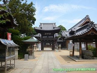 53-023愛媛県松山市