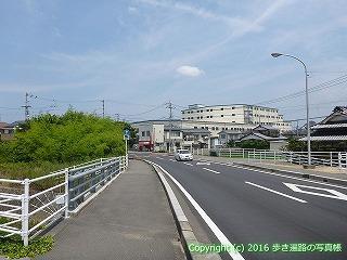 54-015愛媛県松山市