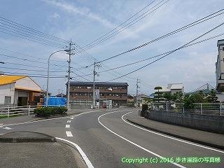 54-016愛媛県松山市