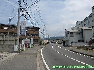 54-017愛媛県松山市