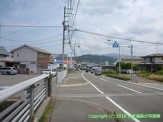 54-020愛媛県松山市