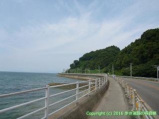 54-042愛媛県松山市