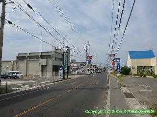 54-080愛媛県松山市