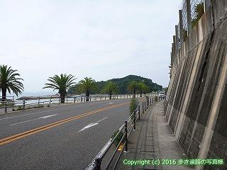 54-117愛媛県松山市