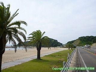 54-119愛媛県松山市