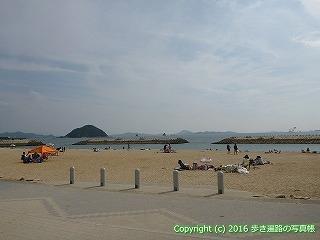 54-122愛媛県松山市