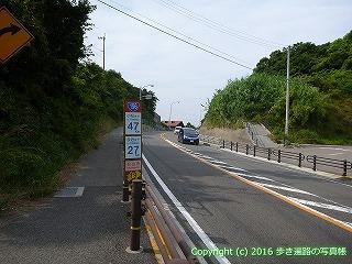 54-126愛媛県松山市