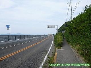 54-136愛媛県松山市