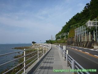 54-162愛媛県松山市