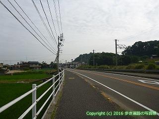 54-215愛媛県今治市