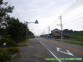 54-261愛媛県今治市