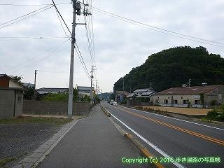 54-271愛媛県今治市