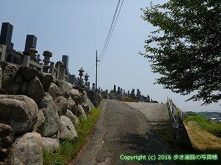 55-003愛媛県今治市