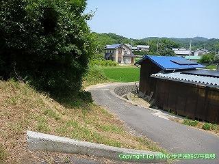 55-006愛媛県今治市