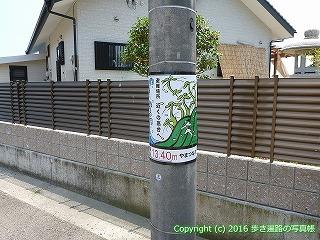 55-015愛媛県今治市