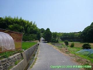 55-022愛媛県今治市