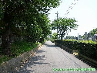 55-030愛媛県今治市