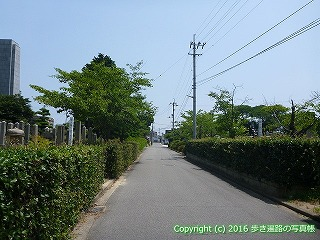55-031愛媛県今治市