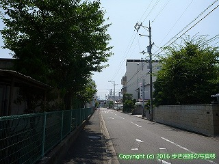 56-003愛媛県今治市