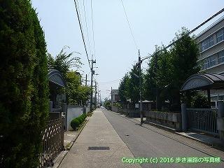 56-008愛媛県今治市