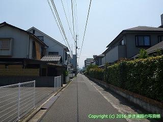 56-011愛媛県今治市