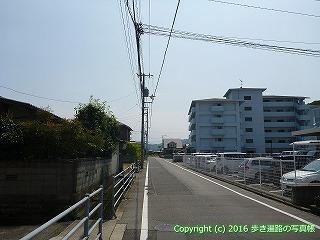 56-017愛媛県今治市