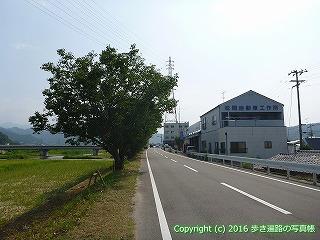 57-020愛媛県今治市