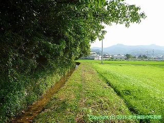57-040愛媛県今治市