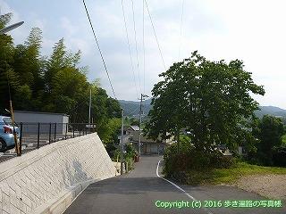 58-002愛媛県今治市