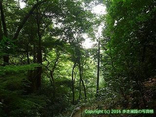 59-003愛媛県今治市