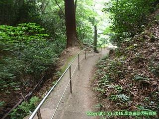 59-004愛媛県今治市