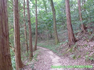 59-022愛媛県今治市