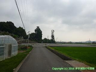 59-030愛媛県今治市