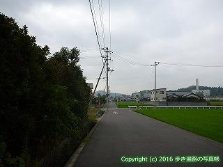 59-044愛媛県今治市