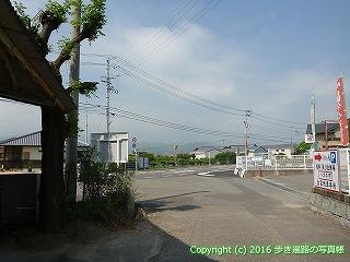 60-003愛媛県今治市