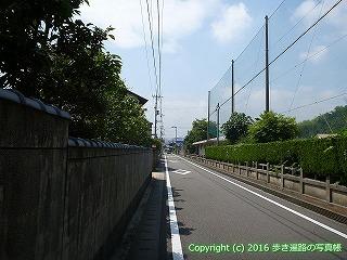 60-011愛媛県今治市