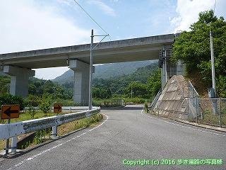 60-051愛媛県今治市今治小松自動車道高架下
