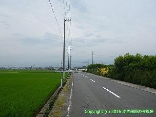 60-146愛媛県西条市