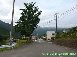 60-215愛媛県西条市