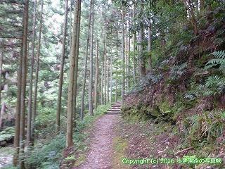 60-277愛媛県西条市