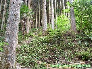 60-300愛媛県西条市