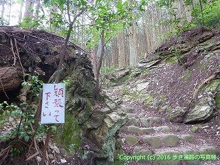 60-310愛媛県西条市