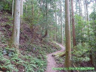 60-314愛媛県西条市