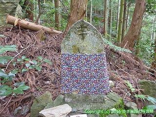 60-315愛媛県西条市