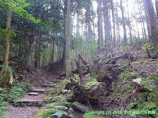 60-322愛媛県西条市