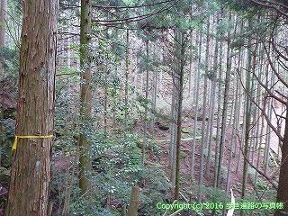 60-323愛媛県西条市